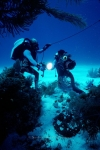 Rebreather;Filmmaking;Caribbea